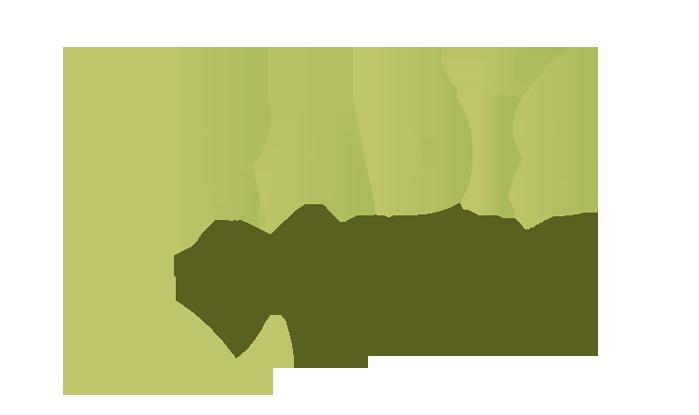 Projeto RADIS UFV